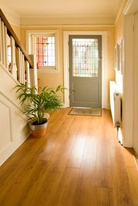 Lustrous hardwood floor in an entry makes any visitor welcome