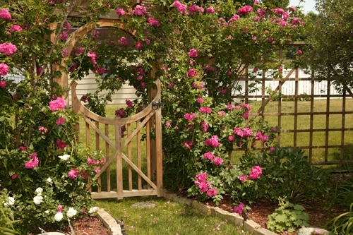 Beautify Side Yards as Part of a Home
