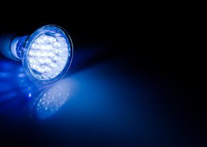 energy efficient LED bulbs save money